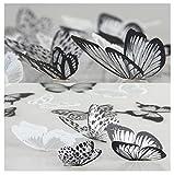 WandSticker4U- 36er-Set 3D Schmetterlinge mit Glitzern SCHWARZ WEIß | Wand Dekoration Fenster Möbel Basteln Hochzeit Tischdeko Butterfly | Deko für Wohnzimmer Schlafzimmer Kinderzimmer Kinder
