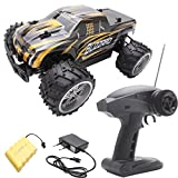 1:16 Electric RC Car,BANANA Remote Control Toys - Off Road High Speed Car