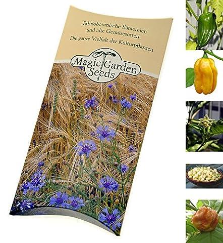 Kit de graines: 'Habanero à gogo', 5 variétés de piment fort habanero