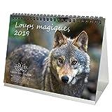 Loup magique · Calendrier de bureau 2019 · 21,0 cm x 16,3 cm · Loup · Loup · Forêt · Nature · Animal · Faune · Edition âme magique
