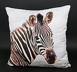 Design Kissenhülle mit hochwertigem Fotodruck Digitaldruck auf super weicher Velour Qualität in 40x40 cm mit Reißverschluß - Zebra - Kissen Afrika Tier Safari Typ324