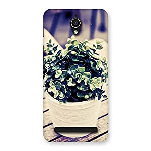 Neo World Plant On Table Back Case Cover for Zenfone Go