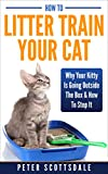 How To Litter Train Your Cat: Why Your Kitty Is Going Outside The Box & How To Stop It