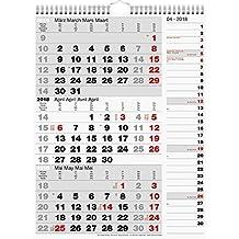 rido/idé 7033330 Wandkalender/Drei-Monats-Kalender Kombi-Planer 3, 1 Blatt = 3 Monate, 300 x 390 mm, Kalendarium 2018, Wire-O-Bindung mit Aufhänger mit rechtsbündigem Streifenkalender