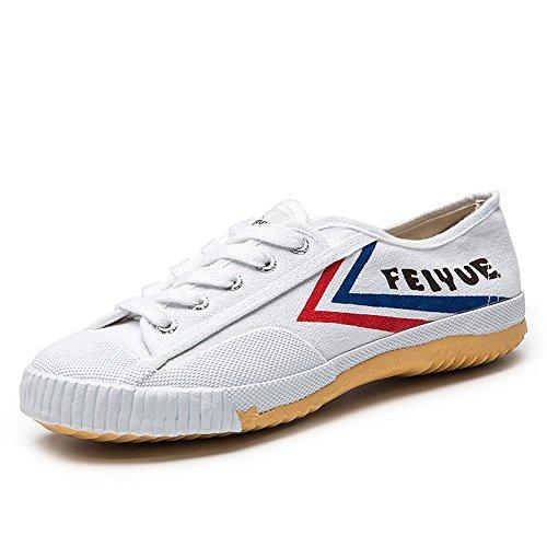 Feiyue Herren Kampfsportschuhe Weiß Weiß Weiß Schuhes ae51fd