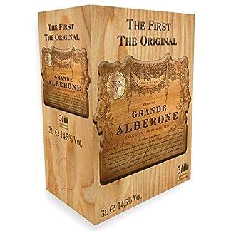 Grande-Alberone-Rosso-Vino-Italia-Rotweincuve-trocken-Bag-In-Box-Eichenfassgereifter-Rotwein-fr-Genieer-30l