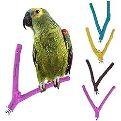 BulzEU 1 Pedazo de Madera Pájaro Loro Arena Rama Percha Juguetes para Grinding Garras (Color al Azar)