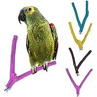 1pcs Bird Parrot arena rama Perca soporte juguetes para moler garras (color al azar)