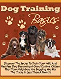 #7: Dog Training Basics: Teach Your Dog To Be A Good Canine Friend Is Easier And More Effective Than Ever!