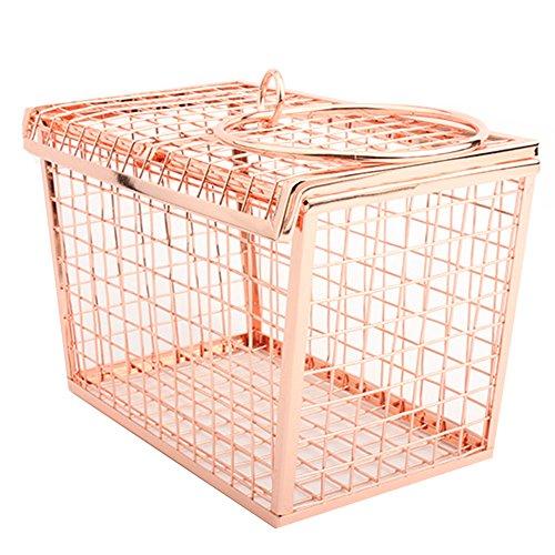 HQADIER Maschendraht Metall Hollow Handtasche Abend Clutch Damen Taschen Abendtaschen Abendtaschen Mobile Handtaschen Eisen Net Taschen,Rosegold (Mesh Abendtasche)