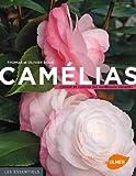 Camélias. Choisir et cultiver les meilleures variétés