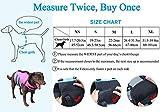 Vivaglory Neuartige Sport Style Ripstop Haustier Hunde-Schwimmweste mit überlegenem Auftrieb und Rettungsgriff - 2