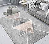 dusg Tapis Design Moderne Géométrie Gris Poudre 120 × 160CM Rug Salon tradtionnel...