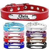 TagME Personalisierte Hundehalsbänder aus Leder/Weich Gepolstertes Hundehalsband/Löschen Sie Name, Telefonnummer und Mikrochipnummer/Passend für kleine Hunde/Rot
