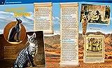 Katzen. Flinke Jäger auf Samtpfoten (WAS IST WAS Sachbuch, Band 59) - 3