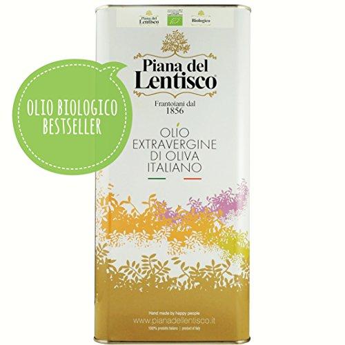 5 litri - olio extravergine di oliva biologico monovarietale leccino - 100% italiano - olio evo bio fruttato gusto delicato