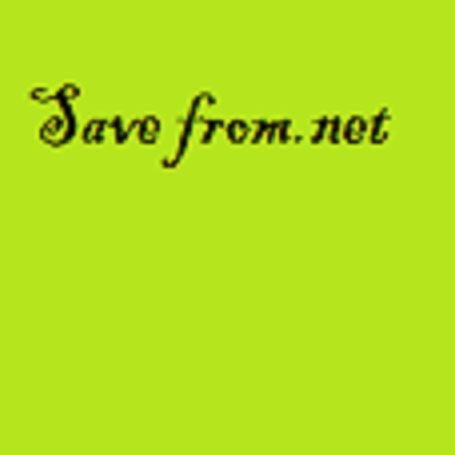 save-fromnet