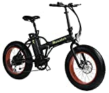 MONSTER 20 - Die Elektro-Faltrad - The Folding Electric Bike - Räder 20