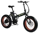 MONSTER 20 - La Pieghevole Bici Elettrica - Ruota 20' - Motore 500W, 48V-12ah - Display LED con 3 livelli di assistenza - Telaio in alluminio (NERO)
