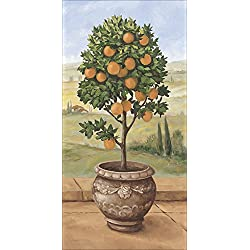 Artland Qualitätsbilder I Wandbilder Selbstklebende Premium Wandfolie 20 x 40 cm Botanik Bäume Obstbaum Malerei Grün A1TR Orangenbaum