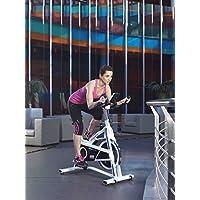 Preisvergleich für ION Fitness VELOPRO GS FI304 indoorbike indoorcycling heimtrainer - 16 kg Schwunggewicht - LCD-Monitor - Manuelles Magnetbremssystem