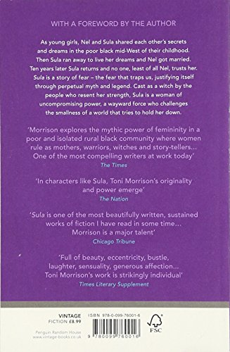 a review of the story of sula and nel in the novel sula Sula book review november 2, 2015 this rich and moving novel traces the morrison's story follows the lives of 2 black women nel and sula the.