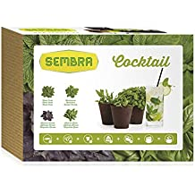 Sembra Cocktail - Kit de cultivo