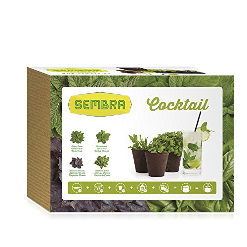 sembra-cocktail-kit-de-cultivo