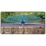 Xpression Décor Key Holder Rack with Photo of Peacock 19673