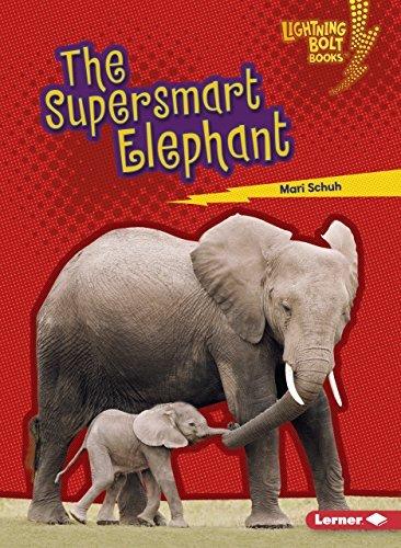The Supersmart Elephant (Lightning Bolt Books ™ — Supersmart Animals)