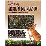 Rosewood Naturals Prairie d'herbe aux pissenlits et fleurs à grignoter et creuser, pour petits animaux