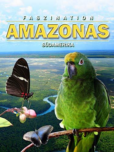 Faszination Südamerika Amazonas