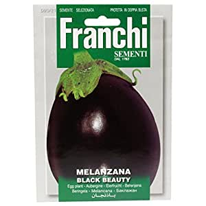 MELANZANA BLACK BEAUTY