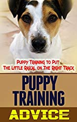 Puppy Training Advice: Puppy Training to Put The Little Rascal on The Right Track