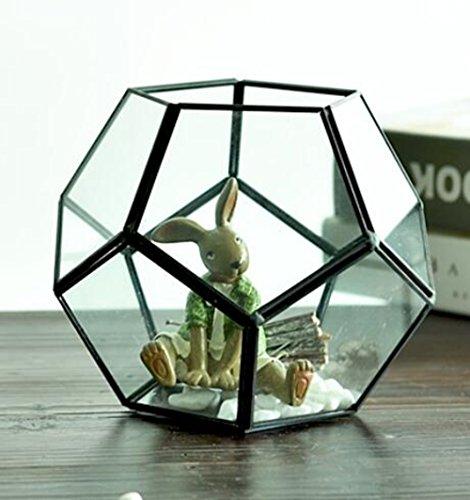Sauberes Glas Geometrisch Pentagon Dodekaeder Terrariumbehälter Für Fern Moss Sukkulenten Air Pflanzen Halter Miniatur-Glas-Display-Pflanzer-Blumentopf
