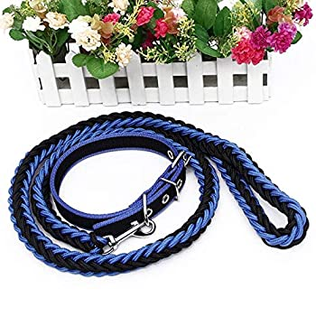 AMDXD Ensemble de Harnais de Laisse de Chien Noir Bleu Nylon Harnais Laisses Set pour Chien Colliers Laisses S