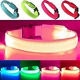 EXPERSOL LED-Hundehalsband, superhell, batteriebetrieben, erhöhte Sichtbarkeit und Sicherheit, 4 Farben (pink)