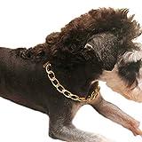 Legendog Dressurhalsband Hund, Hundehalsband Kette Coole Legierung Pet Kette Halskette für Hunde Welpen