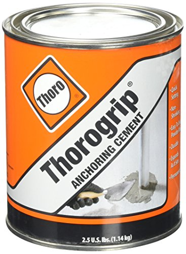 basf-thoro-consumer-products-1-quart-thorogrip-anchoring-cement-t5030