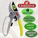 Oakdene 4fase Gear Ratchet Pruner cesoie/forbici/W/Easy grip impugnatura ergonomica per tagliare ramoscelli di giardino/branches/cespugli/siepi/piante/alberi/bonsai