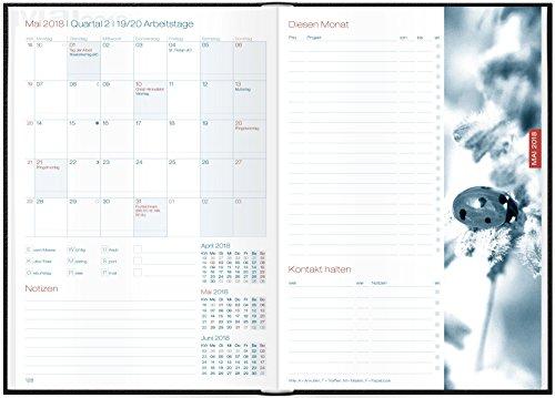 kalender suchen b cher ch ff business timer a5 kalender. Black Bedroom Furniture Sets. Home Design Ideas
