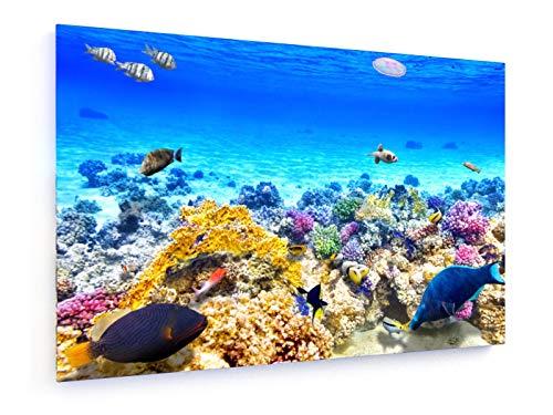 Brian Kinney - Great Barrier Reef - 30x20 cm - Textil-Leinwandbild auf Keilrahmen - Wand-Bild - Kunst, Gemälde, Foto, Bild auf Leinwand - Landschaft -