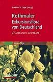 Rothmaler - Exkursionsflora von Deutschland - Gefäßpflanzen: Grundband -
