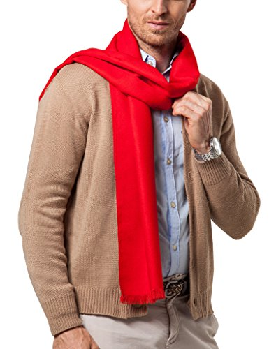 Shubb Men's Fashion Scarves for Winter Soft Cashmere Feel Scarf for Men,  70.8 Inches×11.8 Inches- Buy Online in Burkina Faso at  burkinafaso.desertcart.com. ProductId : 62809592.