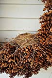 Journal Bird's Nest Pinecone Wreath paperback contains alternating blank pages and lined pages. This allows you the freedom to express yourself with words or images.  Blank pages also provide the option to paste pictures or clippings like a scrapbook...