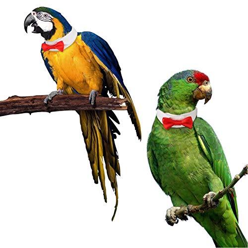 CheeseandU Haustier-Halsband mit roter Schleife für Vögel, Halloween, Hochzeit, Party, Kostüm Smoking, Small