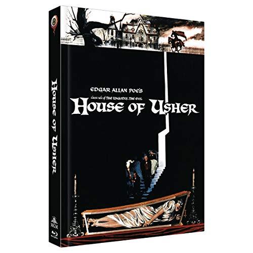 Die Verfluchten - Der Untergang des Hauses Usher (2-Disc Limited Extended Collector's Edition Nr. 25, Cover E, Limitiert auf 222 Stück) [Blu-ray]