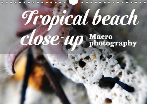 Tropical beach close-up Macro photography (Wall Calendar 2016 DIN A4 Landscape): Photography with a meditative close-up on the little things by the sea. (Monthly calendar, 14 pages) (Calvendo Places)