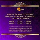 Coban Guitars Premium PCG1 classique Tensions normale 28-43 cordes en Nylon.