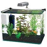 Penn-Plax Water World raggio angolare in vetro curvo acquario kit, 7.5-gallon